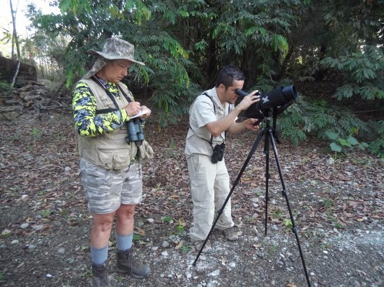 Montezuma, Costa Rica: Juan Carlos adeptly uses the spotting scope, whild I record the birds in my notebook.