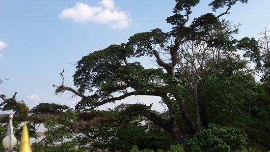 Pak Nam, Thailand: Wat Kaew Ko Wararam - okolí chrámu