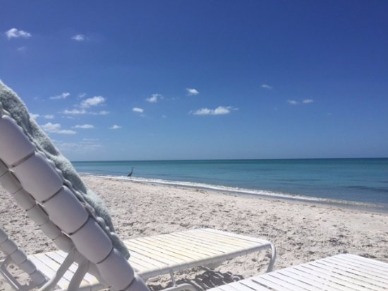 View From Beach Chair At SeaHorse Resort