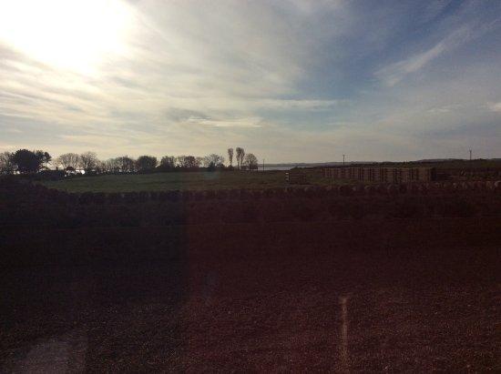 Fenham Farm Bed and Breakfast : Breakfast view