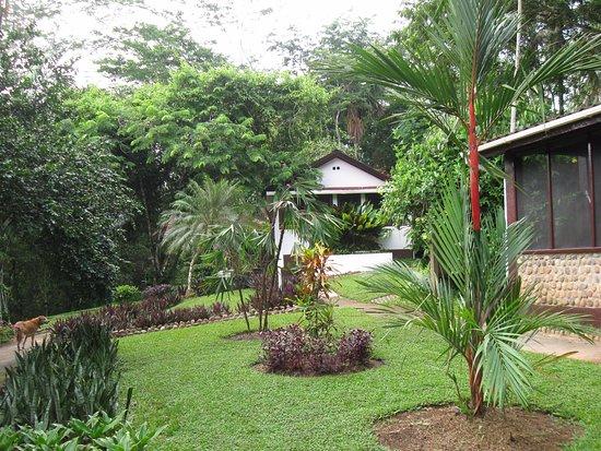 Photo of duPlooy's Jungle Lodge San Ignacio