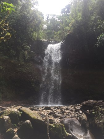 The Lost Waterfalls-Boquete: photo2.jpg
