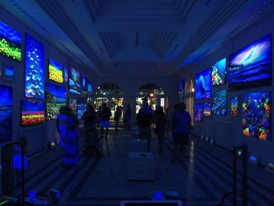 Massimo Meda Art Gallery - 25 N Pineapple Ave, Sarasota 34236, FL ...