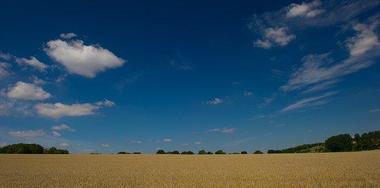 Blandford Forum, UK: Countryside views