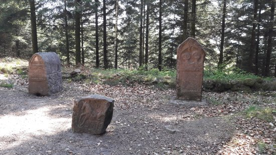 [Image: camp-celtique-la-bure.jpg]