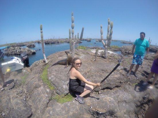 Puerto Villamil, เอกวาดอร์: Con un lobo marino <3