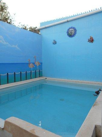 Bed and Breakfast Cancun: Zwembadje voldoet prima voor de gewenste afkoeling !