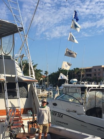 seven flages of released billfish we were the talk of the dock