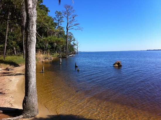 Goose Creek State Park, Washington, NC