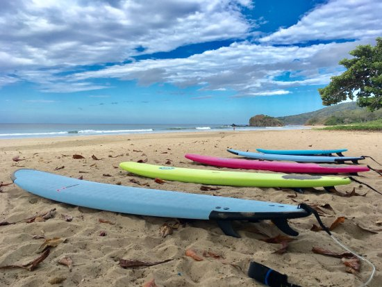 Brasilito, Costa Rica: Rainbow of boards ready for riders.