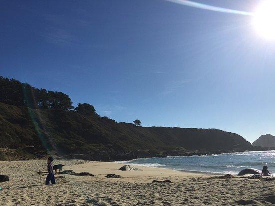 Playa Canelo : photo3.jpg