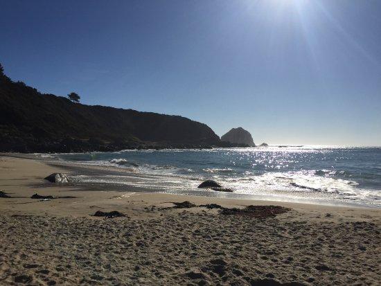 Playa Canelo : photo4.jpg