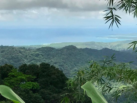 The El Yunque Rain Forest: View to sea from Tower
