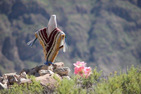 Socoroma, Чили: Cruz de Mayo (tradición Aymara)
