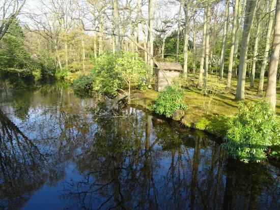 landgoed clingendael;benoordenhout den haag - photo de landgoed