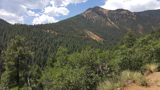 North Cheyenne Cañon Park and Starsmore Discovery Center : Along the trail