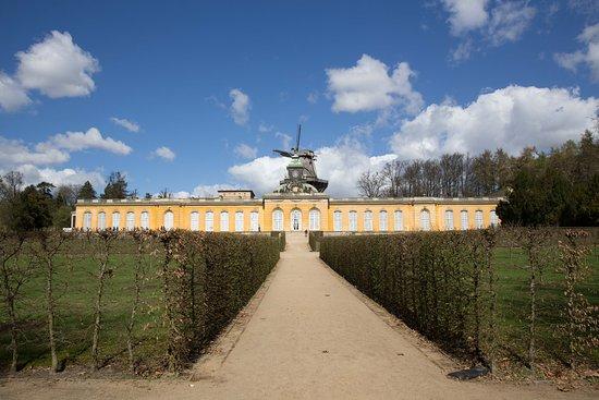 Potsdam's Gardens: Garden