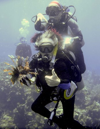 Sandy Bay, Honduras: End of dive 200, even managed to get the biggest lionfish of the month!