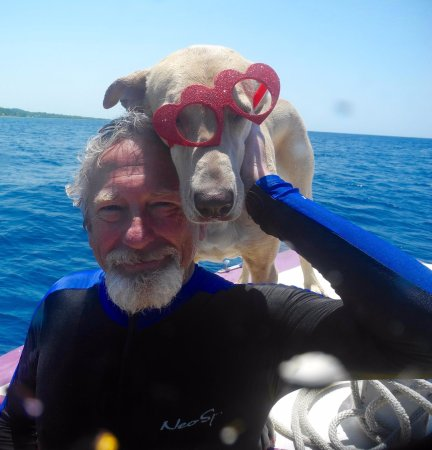 Sandy Bay, Honduras: Me and Lola just chillin after a great 200th dive!