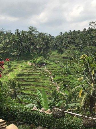 Mengwi, Indonesien: DJ Bali Tour