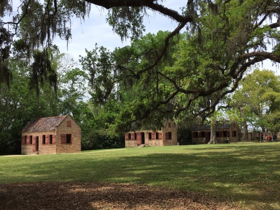 Mount Pleasant, Carolina del Sur: Boone Hall - Beautiful grounds.