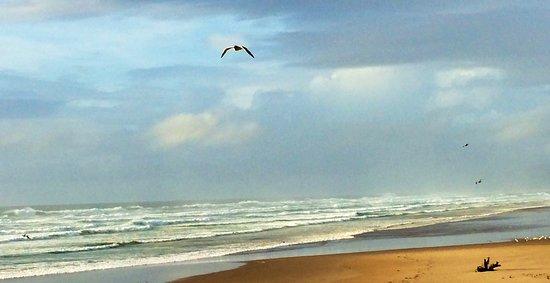 Снимок Rockaway Beach