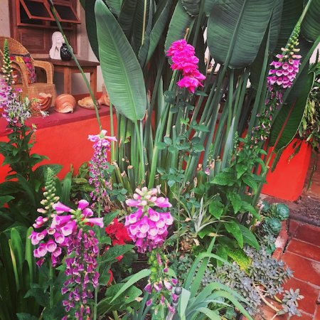 Hotel Casa Encantada: Courtyard detail