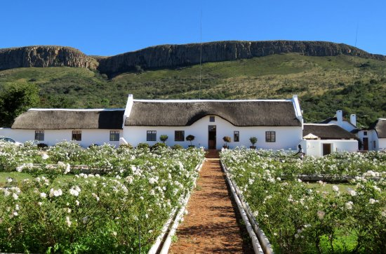 Hekpoort, South Africa: Main House