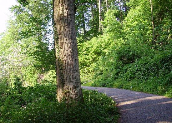 Exotenwald Weinheim