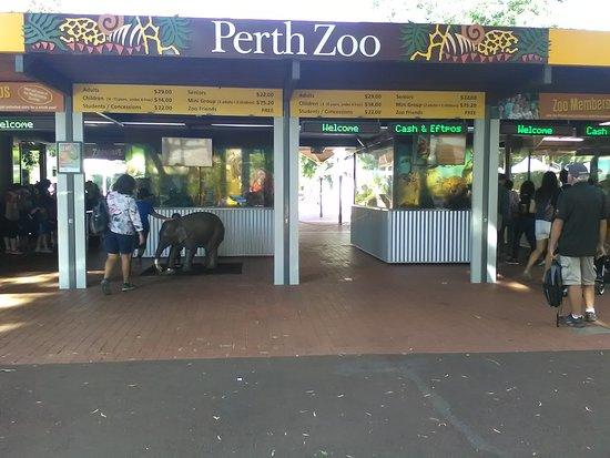 South Perth, Australien: IMG_20170421_141725_large.jpg