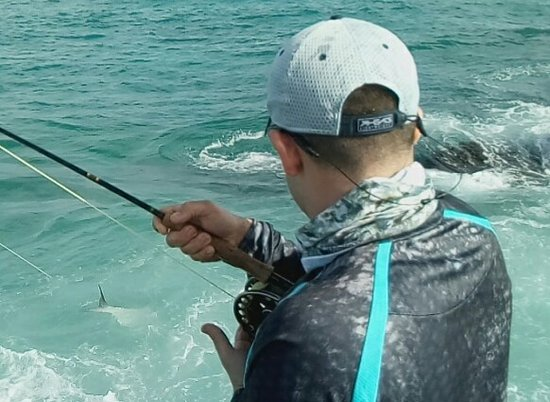 Fish tales picture of fish tales george town tripadvisor for Grand cayman fishing