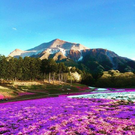 7 Tempat Wisata di Jepang Terbaik