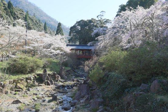 Mihara, Japón: 神社に向かう橋の周りも