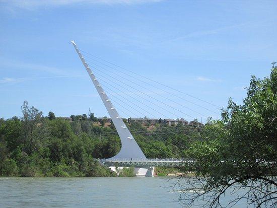 Turtle Bay Exploration Park: sundial bridge