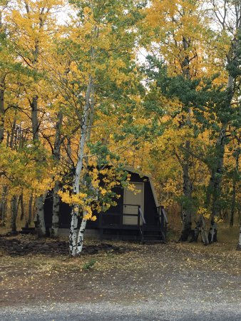Island Park, ID: Single Queen Duplex Cabin