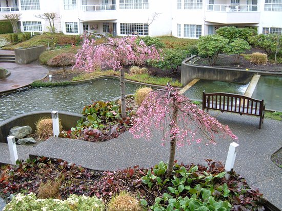 New Westminster, Kanada: Condo on the esplanade