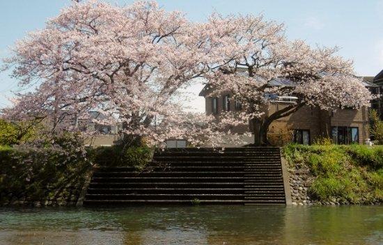 Ihara River