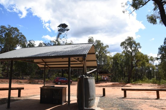 Pilliga National Park