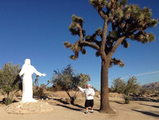 Yucca Valley, CA: photo2.jpg