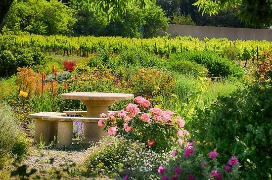 Winery Tour and Wine Tasting in...