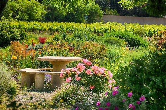 Winery Tour og vinsmaking i...