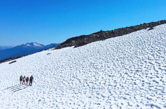 Tour por el glaciar Whistler Discovery