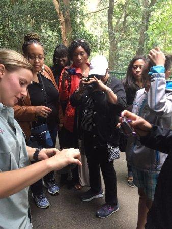 Pokolbin, Australien: We enjoyed our guided tour at Blackbutt Reserve