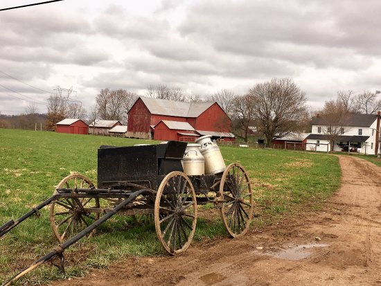 Berlin, OH: Amish Milk ready for pick up