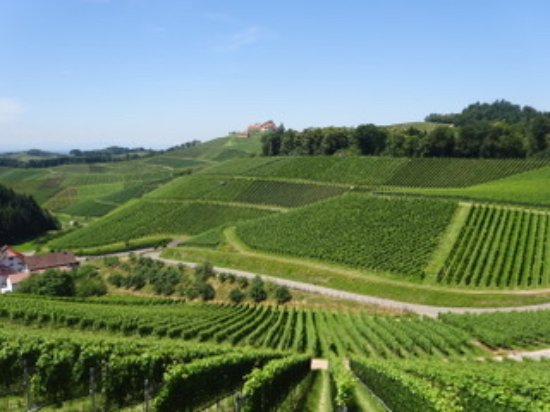 Oberkirch Resmi