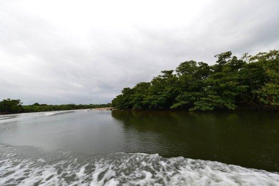 Taketomicho Iriomote-jima Foto