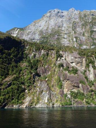 フィヨルドランド国立公園, ニュージーランド, 船から