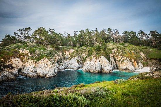 写真Point Lobos State Reserve枚