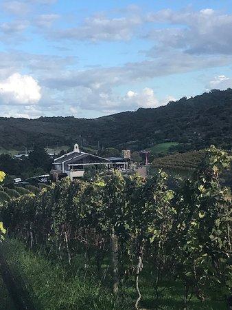 Isla Waiheke, Nueva Zelanda: photo2.jpg