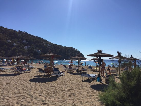 Sant Vicent de sa Cala, Spain: Nice beach, nice food and drink. Good for snorkelling.